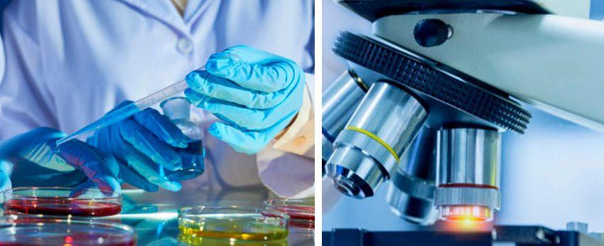 Nos dedicamos a realizar análisis clínicos y de alta complejidad para la prevención, diagnóstico y seguimiento de enfermedades relacionadas a alteraciones hormonales, oncológicas, reumatológicas y crónicas, como la diabetes y osteoporosis.